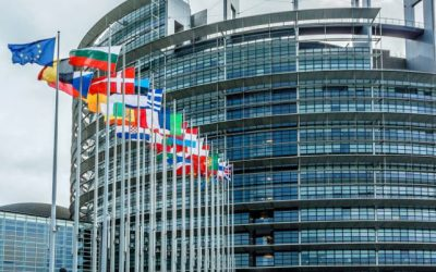 Elezioni europee: la storia, il sistema elettorale, i partiti
